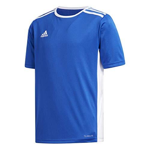 adidas Youth Entrada 18 Jersey, Bold Blue/White, Medium