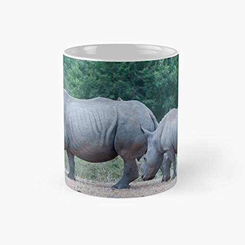 T-shirts Park Printed South - Rhinoceros Kruger National Park South Africa 11 Oz Coffee Mugs