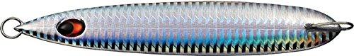 エバーグリーン(EVERGREEN) メタルジグ カプリスエッジ320g CP12 ホログラムシルバー.の商品画像