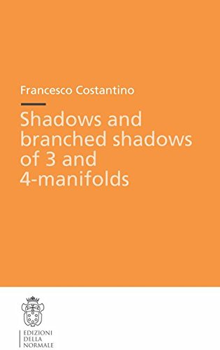 Shadows and branched shadows of 3- and 4-manifolds (Publications of the Scuola Normale Superiore) (v. 1)