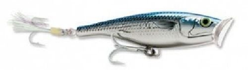 Rapala Saltwater Skitter Pop 12 Fishing Lure (Mullet)