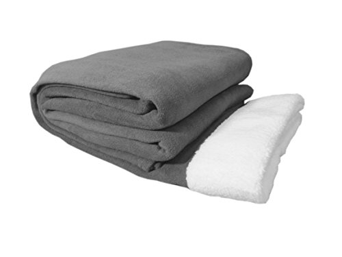 Cozy Fleece Sherpa Trim Microfleece Sheet Set, King, Silver