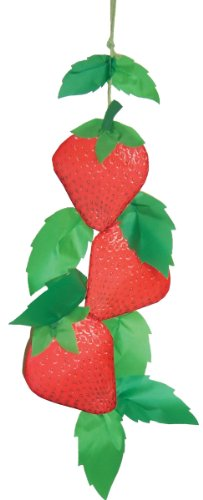 In the Breeze String of Strawberries Hanging (Spinner Banner)