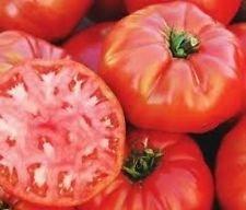 30 Mortgage Lifter Tomato Seeds Heirloom 2018 (Non-GMO Heirloom Vegetable (Mortgage Lifter Tomato)