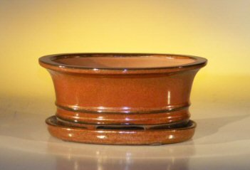 Aztec Orange Ceramic Bonsai Pot - Oval w Attached Humidit...