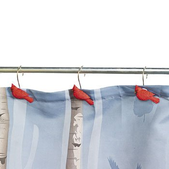 Curtains Ideas bird shower curtain hooks : Amazon.com: Cardinal Red Bird Shower Curtain Hooks Set of 12: Home ...