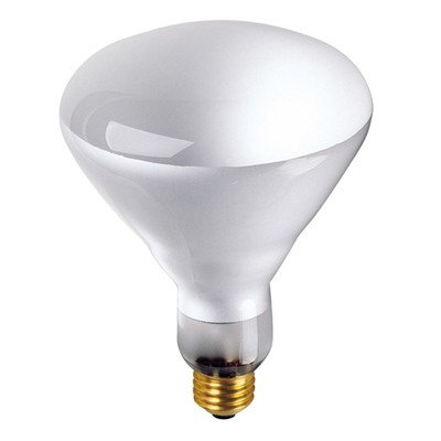 65W Incandescent BR40 Indoor Reflector Flood Light Bulb with E26 Base in Clear [Set of - Reflector Incandescent Br40