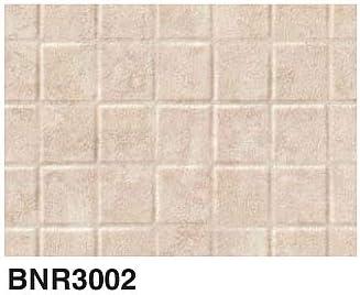 BNR3002