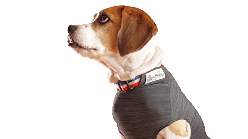 Swaddleshirt Anti Anxiety Vest For Dogs | The Best Weight Vest For Dog Anxiety Relief. Effectively Calm Dogs during Thunderstorms, Fireworks, Travel, And More. (Small, HGrey) by Swaddleshirt