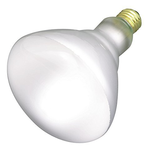Satco 65BR40/FL Incandescent Reflector, 65W E26 BR40, Frosted Bulb [Pack of 6]