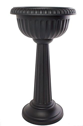Bloem Grecian Urn Pedestal Planter, 18'', Black by Bloem
