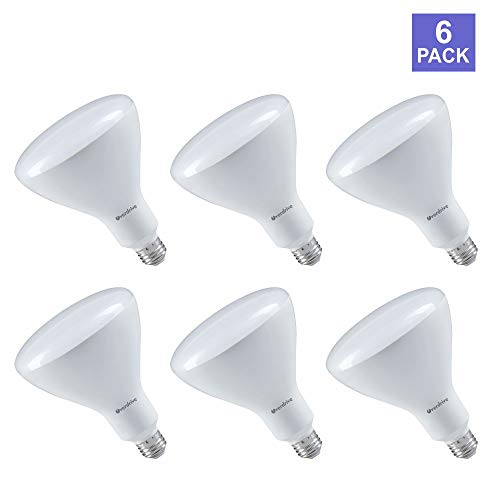 Dimmable R40 Reflector - Overdrive 642 16.5W R40 Dimmable-3000K-Pack of 6, Soft White