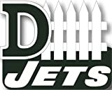 New York Jets D-Fence Pin
