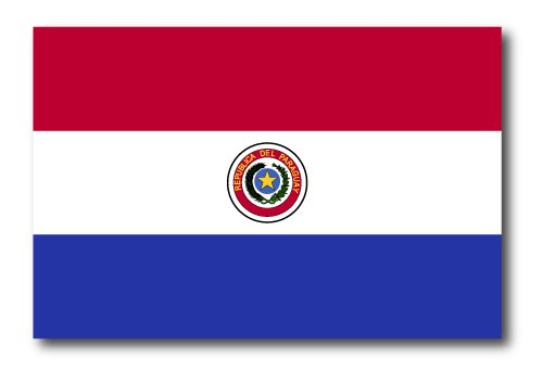 Paraguay Flag Car Magnet Decal - 4 x 6 Heavy Duty for Car Truck SUV