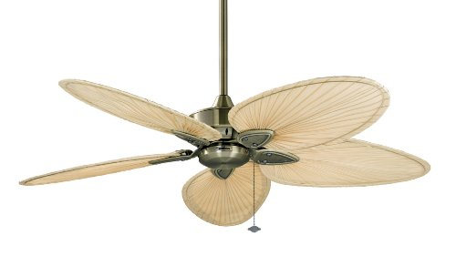 Fanimation FP7500AB-220 Windpointe 220-volt Ceiling Fan, Antique Brass