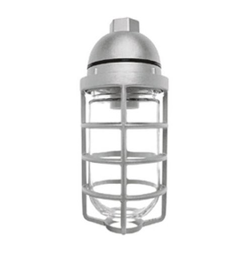RAB Lighting VP100DG/F13 Vaporproof VP Ceiling Pendant Mount CFL Lamp with Glass Globe and Cast Guard, A19 Type, Aluminum, 13W Power, 1/2
