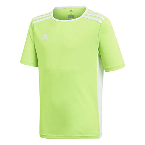 - adidas Youth Entrada 18 Jersey, Solar Green/White, Large