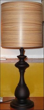 Lite Source LS-974D/BRZ Pharma Collection Floor Lamp with Me