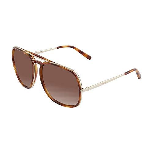 Sunglasses Chloe CE 726 S 219 Tortoise/silver/Brown ()