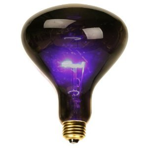 UV Blacklight Large Flood Bulb - - Amazon.com
