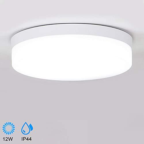 DLLT 4.72 LED Ceiling Light Fixture for Closet Bathroom Dinning Room Laundry Room 12W Flush Mount Ceiling Downlight 6000K Cool White, AC 110-220V