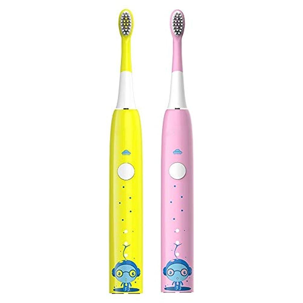 アーネストシャクルトン東ティモール改修BOBIDYEE 充電式歯ブラシを白くする子供の音波の電動歯ブラシの柔らかい毛の携帯用防水歯ブラシ (色 : ピンク)