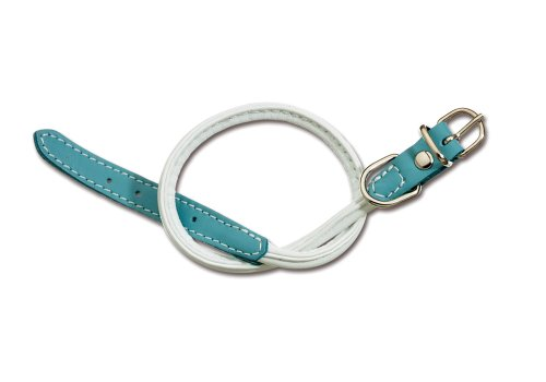 Petego La Cinopelca Soft Calfskin Two Color Tubular Dog Collar, White/Light Blue, Fits 9 Inches to 11 Inches