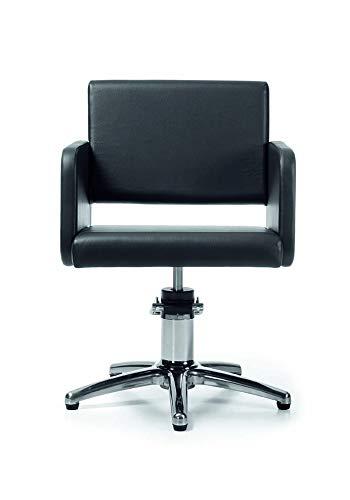 Takumi Beauty 401001 - Sillón de peluquería, color negro ...
