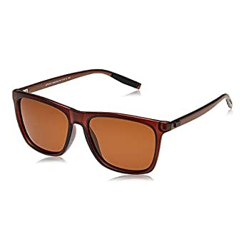 TFL Wayfarer Sunglasses for Men - Brown, MT8422-S008-90-C22