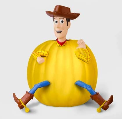 Woody Pumpkin Decorating Kit With Paint And Push In Arms Legs And Head