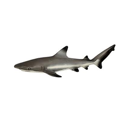 Safari Ltd  Wild Safari Sea Life Blacktip Reef Shark: Toys & Games