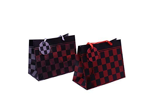 Checkered Party Favor Gift Bags - Checkered Goody Bags Party Supplies & Treats Paper Bags - Pack of 12 Comes in 2 Assorted Checkered Designs