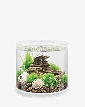 BiOrb 45929.0 Tube 15 LED White Aquariums by biOrb