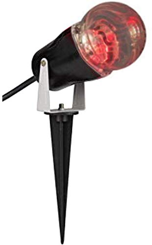 Lightshow Projection Ghost Flame for Halloween, Parties, Expo, Events, Outdoor and Shows (1 (Halloween Party Expo Show)