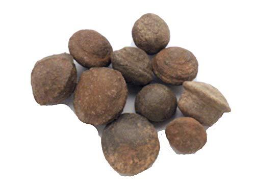 Fundamental Rockhound Products: Moqui Marble Shaman Stone from Utah Moki Ball (1/2-3/4