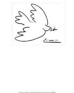 Kunstdruck Friedenstaube blau von Pablo Picasso Gre 40 x