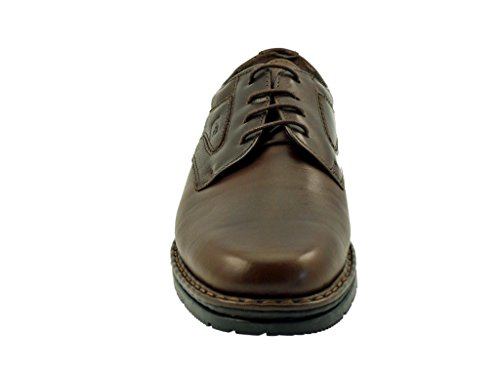Fluchos - Zapatos de cordones para hombre café
