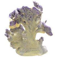 BLUE RIDGE CORAL SMALL NAT. 24 (Blue Ribbon Coral Cats)