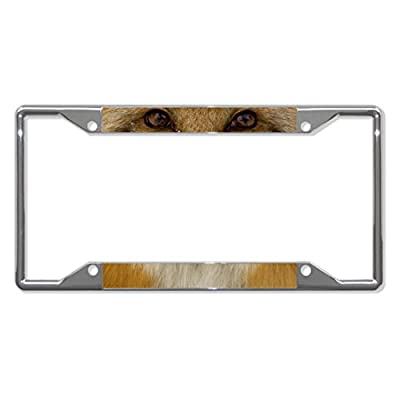 Fox Animal Eyes Metal License Plate Frame Tag Holder Four Holes Perfect for Men Women Car garadge Decor