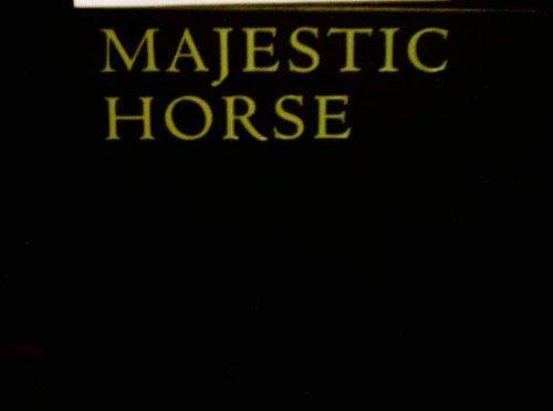 Majestic Horse ()
