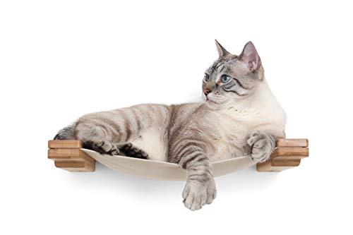 CatastrophiCreations Cat Mod Lounge Handcrafted Wall Mounted Cat Tree Shelves, Unfinished/Natural, One Size