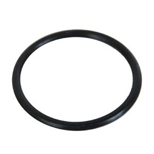 Intex Sand Filter Water Inlet O-Ring