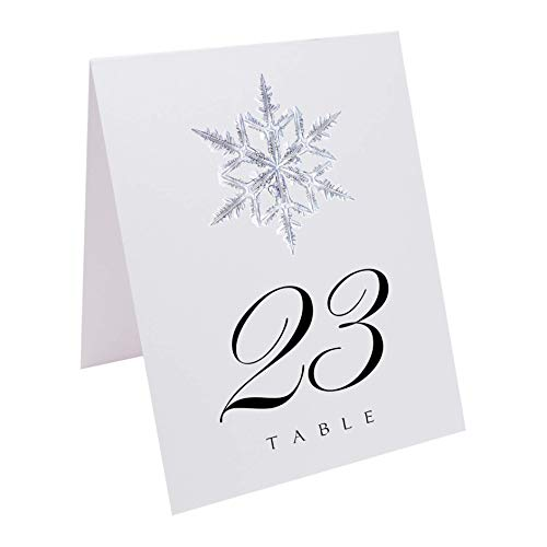 (Documents and Designs Christmas and Holiday Snowflake Table Numbers, 1-20)