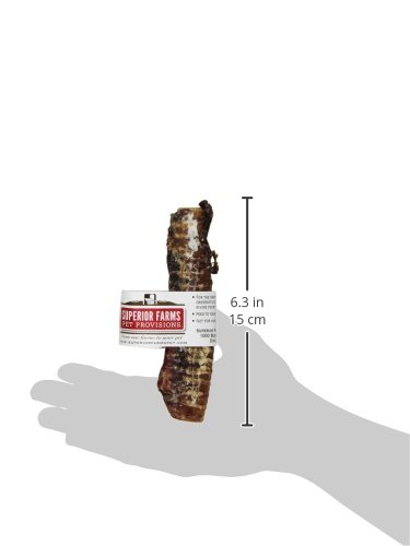 Image of Superior Farms Pet Provisions, Venison Trachea Whistler, Dog Snack Treat, 1Ct.