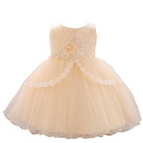 (JIANLANPTT Baby Girl's Cute Lace Flower Appliques Sleeveless Tulle Party Dress Formal Christening Dress Style5 Champagne 6-9months)