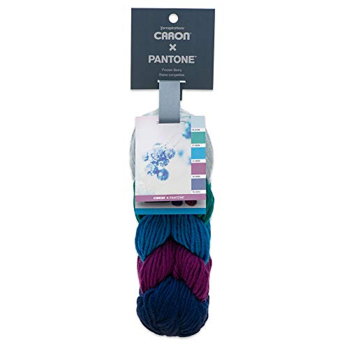 - Caron x Pantone Acrylic & Merino Wool Blend Yarn •• 5 Coordinated Colors in 1 Braid (Frozen Berry 291101-01022)