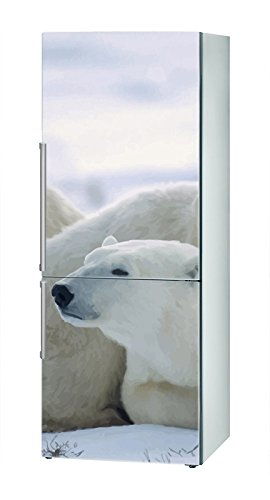 Decusto - Polar Family - Adhesivo para Decorar Tu Nevera: Amazon ...