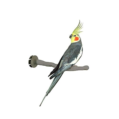 """K&H PET PRODUCTS Thermo-Perch Heated Bird Perch Regular Finish, Gray, Small/1"""" x 10.5"""" from K&H PET PRODUCTS"""