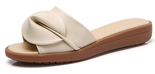 sandalias y los deslizadores de pendiente femenino de la manera del verano con los zapatos de fondo grueso arrastran la palabra beige