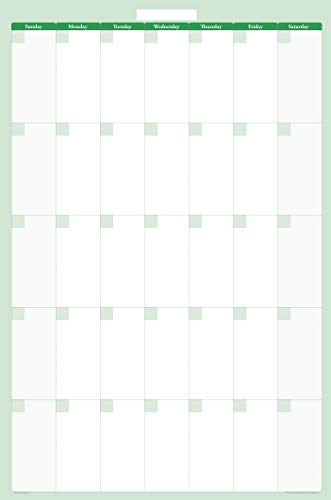 (30-Day 1-Month Dry and Wet Erasable Wall Calendar Planner (Vertical 36